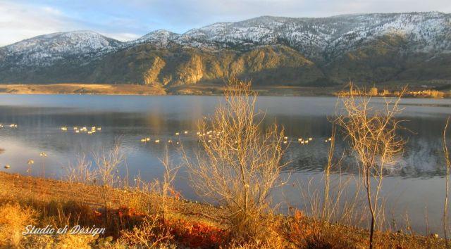 Lake Side 3990