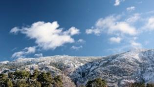 snow top 1620